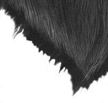Come Disegnare i Capelli e il Pelame